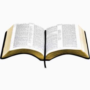 DIE ENGEL IN DER BIBEL